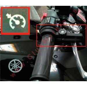 Control de Crucero para acelerador de Moto