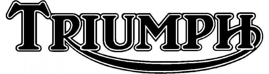 Control de crucero integrado en motos Triumph.