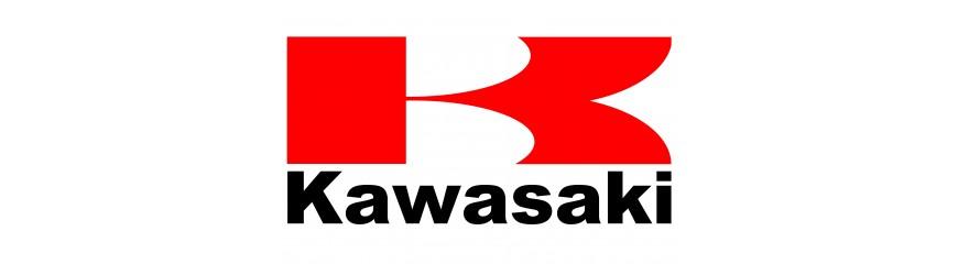 Escapes SC Project para Kawasaki